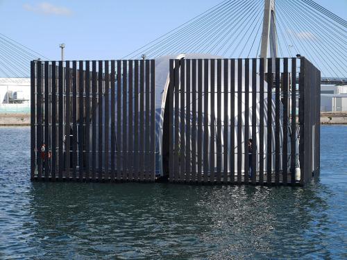 NML arriving in Darling Harbour